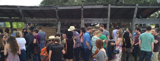 Willie crowds2